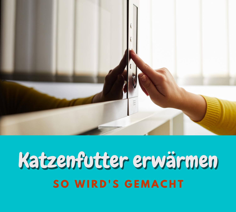 Read more about the article Katzenfutter erwärmen – So macht man es richtig