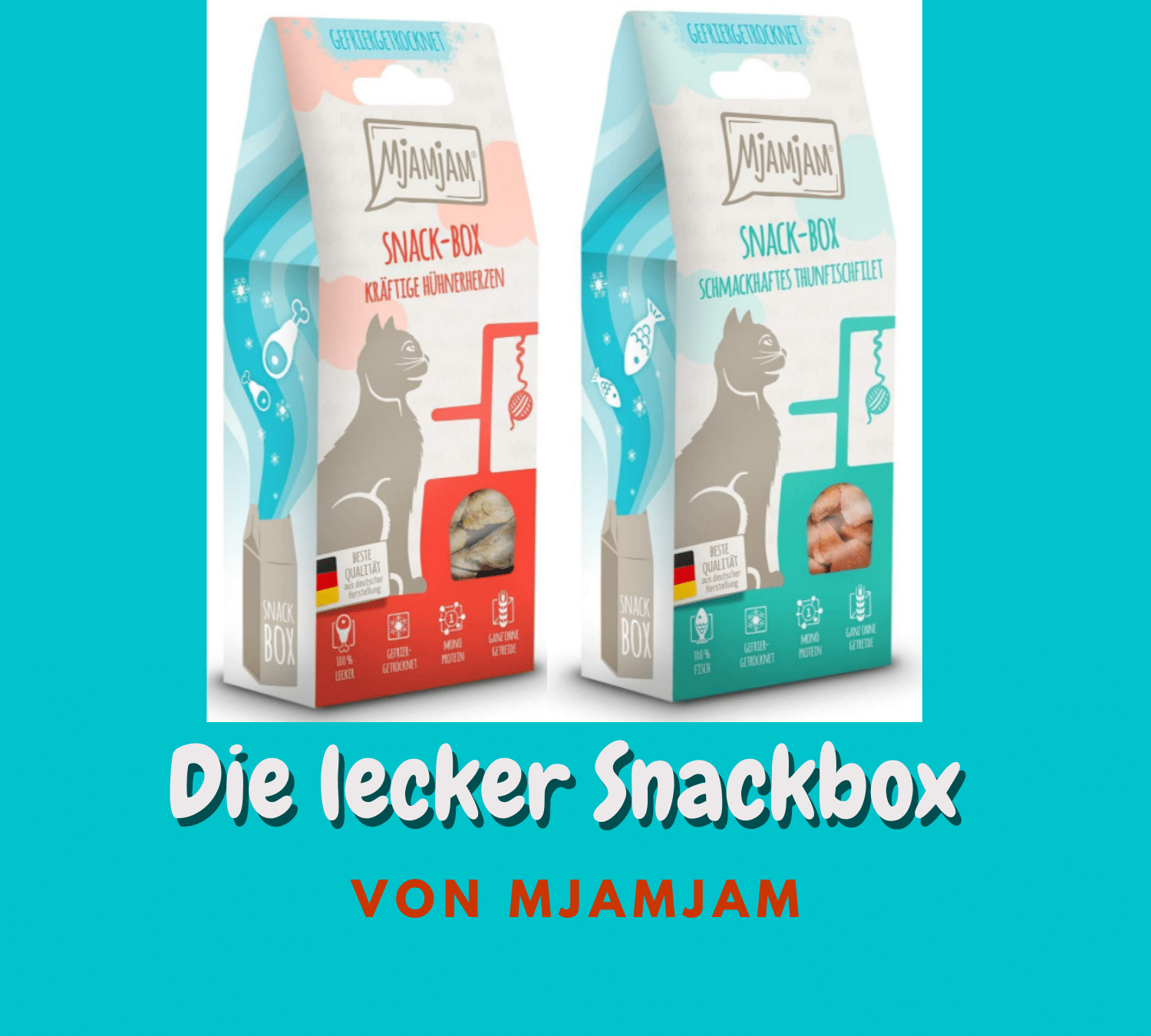 Read more about the article MjAMjAM Snackboxen