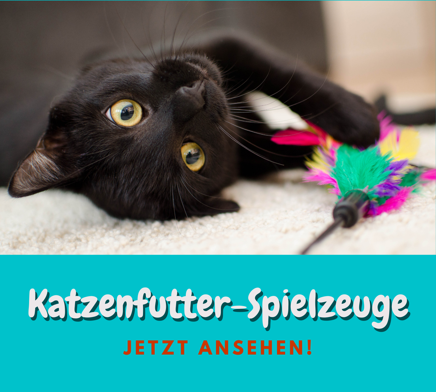 Read more about the article Katzenfutter Spielzeug