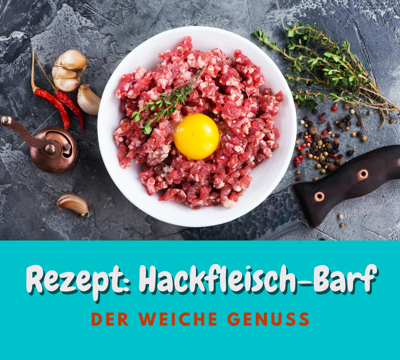 Read more about the article Rezept: Hackfleisch – Barf | Der weiche Genuss